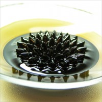 100ml - Ferrofluid